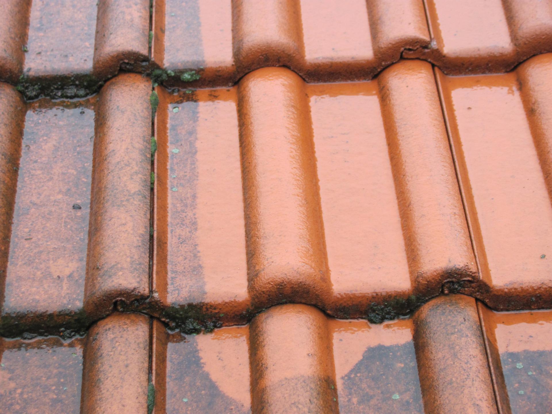 мойка крыши от мха