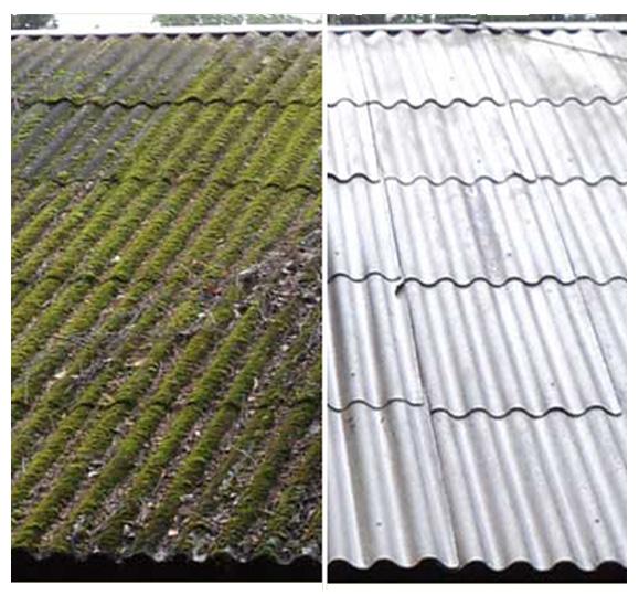 очистить крышу от мха